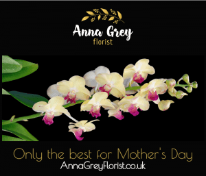 example digital ad mother's day flowers